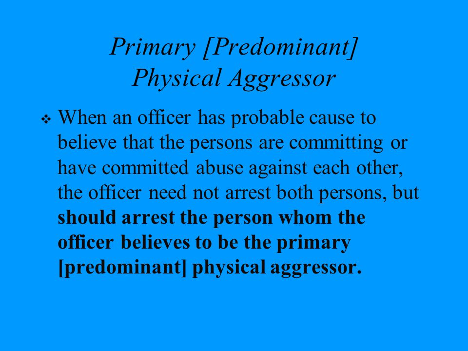 Primary [Predominant] Physical Aggressor